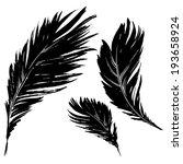 feathers of bird   vector set    Shutterstock .eps vector #193658924