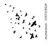 a flock of flying birds. vector ...   Shutterstock .eps vector #1937219029