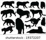 wild cats vector silhouettes | Shutterstock .eps vector #19372207