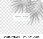 shadow overlay effect. natural... | Shutterstock .eps vector #1937242006