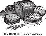 bread  vector illustration.... | Shutterstock .eps vector #1937610106