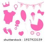 Baby Girl Shower Set. Elements...