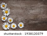 Background Of Daisies On An Old ...