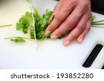 preparing food for thai food... | Shutterstock . vector #193852280