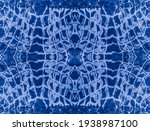 Snake Embroidery Patch. Aqua...