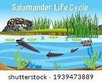 scene with salamander life... | Shutterstock .eps vector #1939473889