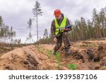 A Forest Engineer Checks A Plot ...