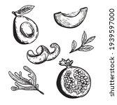 drawn avocado pomegranate... | Shutterstock .eps vector #1939597000