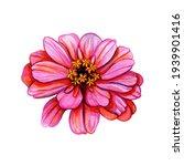 Watercolor Flower Bud. Hand...