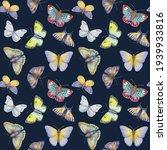 Colorful Watercolor Butterflies ...