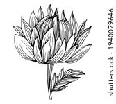 chrysanthemum by hand drawing.... | Shutterstock .eps vector #1940079646