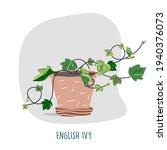 english ivy illustration.... | Shutterstock .eps vector #1940376073