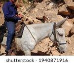 Grand Canyon Village  Az  Usa   ...