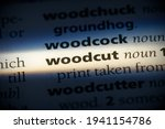 Small photo of woodcut word in a dictionary. woodcut concept, definition.