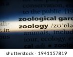 Zoology Word In A Dictionary....