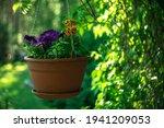 A Brown Plastic Flower Pot...
