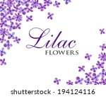 lilac flowers frame isolated on ... | Shutterstock . vector #194124116
