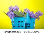 beautiful lilac flowers on a... | Shutterstock . vector #194130098