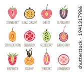 set of sliced berry icons with...   Shutterstock .eps vector #1941317986