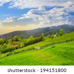 summer landscape. fence near the meadow in village hillside. forest in fog on the mountain - stock photo