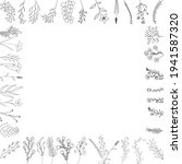 background sketch plants  grass ... | Shutterstock .eps vector #1941587320