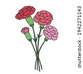 hand painted pink carnation... | Shutterstock .eps vector #1942271143