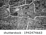 distressed overlay texture of... | Shutterstock .eps vector #1942474663
