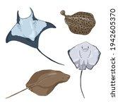 numb fishes cartoon set. vector ... | Shutterstock .eps vector #1942605370