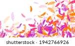 crimson orange purple feather...   Shutterstock .eps vector #1942766926
