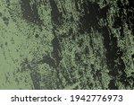 distress urban used green... | Shutterstock .eps vector #1942776973