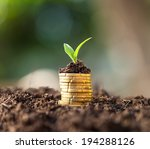 golden coins in soil with young ... | Shutterstock . vector #194288126