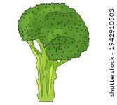 broccoli clipart. vector...   Shutterstock .eps vector #1942910503