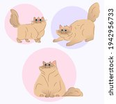 cute cat with big blue eyes and ... | Shutterstock .eps vector #1942956733