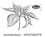 hand drawn sketch black and...   Shutterstock .eps vector #1943760379