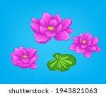 Lotus Pink Flower On Blue...