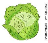 cabbage clipart. vector... | Shutterstock .eps vector #1944360259