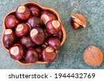 Buckeye Chestnut In Wooden Bowl ...