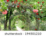 Stock photo roses in the garden 194501210
