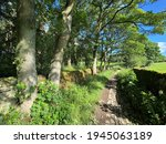 Narrow Walkers Footpath  With...