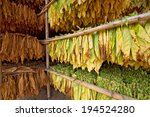 Small photo of Tobacco leaves drying in the shed.