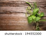 herbs on wooden table closeup. | Shutterstock . vector #194552300