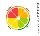 orange  lime  lemon and... | Shutterstock .eps vector #1945565659
