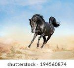 akhal teke horse running in...   Shutterstock . vector #194560874