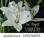 Our Deepest Sympathy Card....