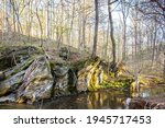 A Forest Creek Flows By A Rock...