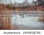 A Frozen Lake Along The Banks...