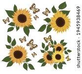 Sunflower And Butterflies....