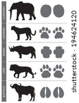 africa's big five animal tracks ... | Shutterstock .eps vector #194624120