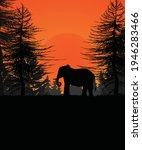Elephant Silhouette...