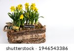 happy spring wishes and flower... | Shutterstock . vector #1946543386